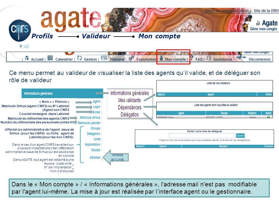 P. 46 Ce menu permet au valideur de visualiser la liste des agents quil valide, et de déléguer son rôle de valideur Profils Valideur Mon compte Dans l
