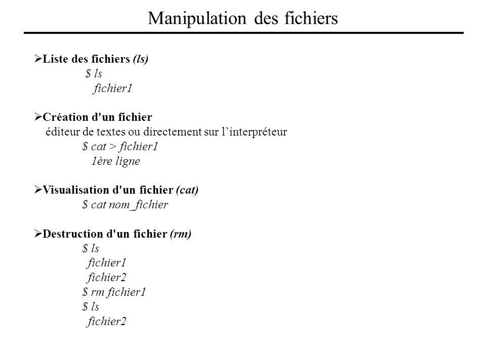 Liste des fichiers (ls) $ ls fichier1 Création d'un fichier éditeur de textes ou directement sur linterpréteur $ cat > fichier1 1ère ligne Visualisati