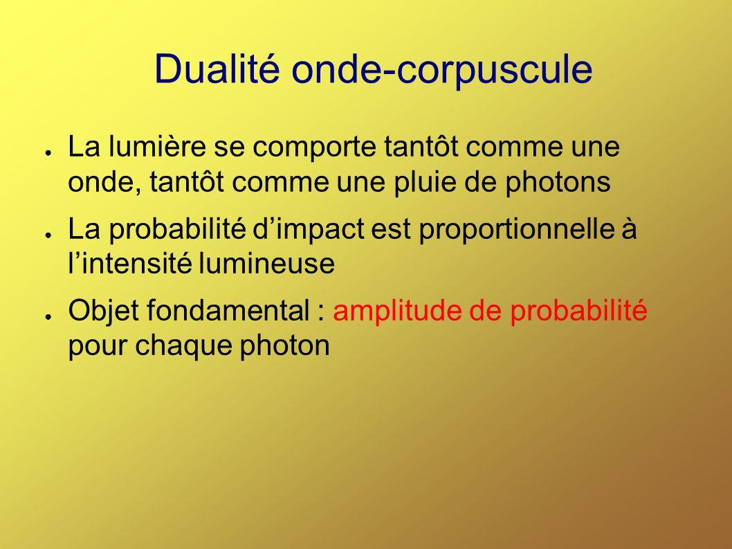 Dualité onde-corpuscule La lumière se comporte tantôt comme une onde, tantôt comme une pluie de photons La probabilité dimpact est proportionnelle à lintensité lumineuse Objet fondamental : amplitude de probabilité pour chaque photon
