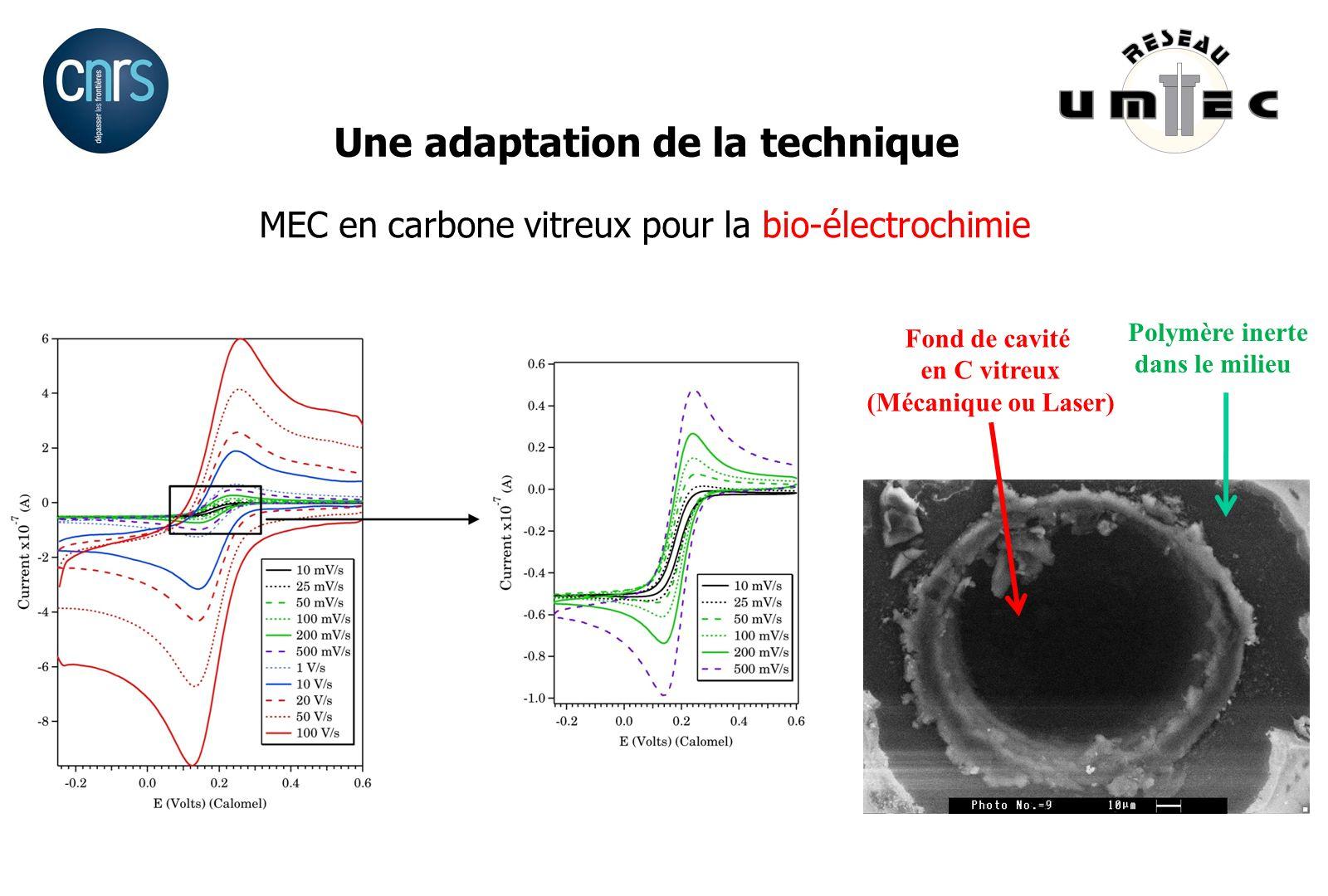 Une adaptation de la technique MEC en carbone vitreux pour la bio-électrochimie Polymère inerte dans le milieu Fond de cavité en C vitreux (Mécanique
