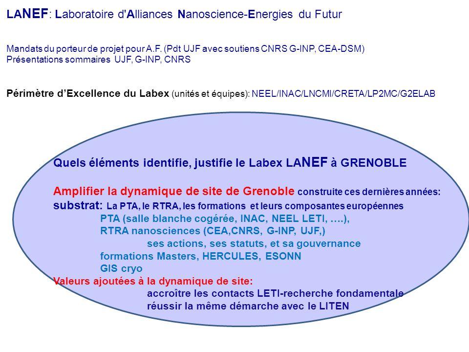 LA NEF : Laboratoire d'Alliances Nanoscience-Energies du Futur Mandats du porteur de projet pour A.F. (Pdt UJF avec soutiens CNRS G-INP, CEA-DSM) Prés