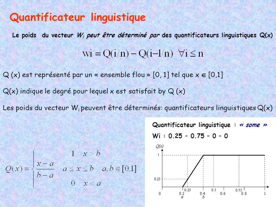 Quantificateur linguistique Le poids du vecteur W i peut être déterminé par des quantificateurs linguistiques Q(x) Q (x) est représenté par un « ensemble flou » [0, 1] tel que x [0,1] Q(x) indique le degré pour lequel x est satisfait by Q (x) Les poids du vecteur W i peuvent être déterminés: quantificateurs linguistiques Q(x) Quantificateur linguistique : « some » Wi : 0.25 – 0.75 – 0 – 0