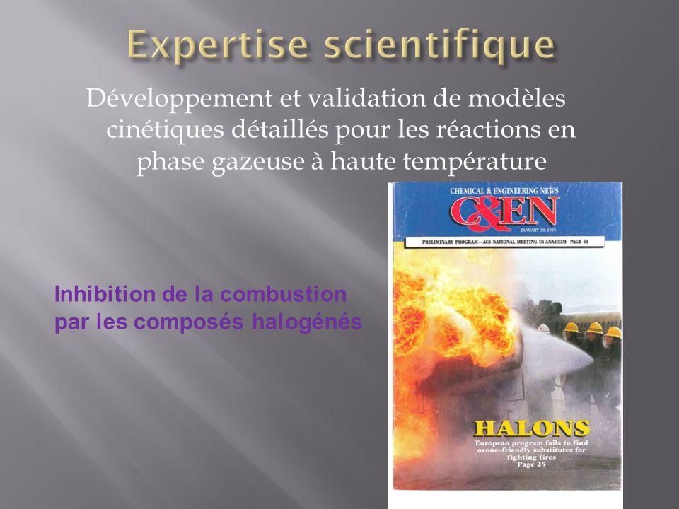 Développement et validation de modèles cinétiques détaillés pour les réactions en phase gazeuse à haute température Inhibition de la combustion par le