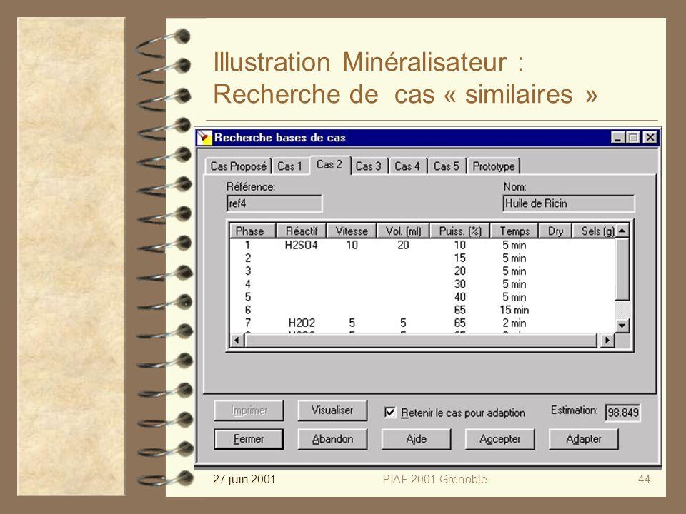 27 juin 2001PIAF 2001 Grenoble44 Illustration Minéralisateur : Recherche de cas « similaires »