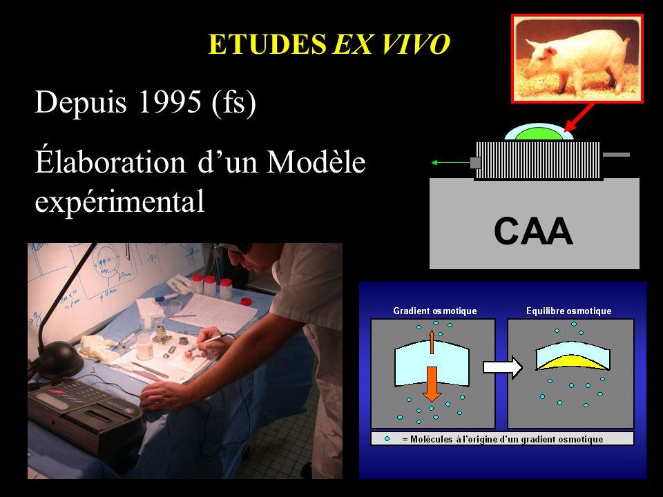 ETUDES EX VIVO Depuis 1995 (fs) Élaboration dun Modèle expérimental CAA