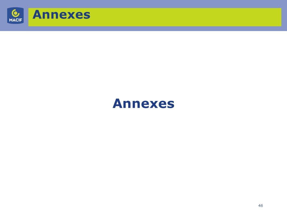 46 Annexes