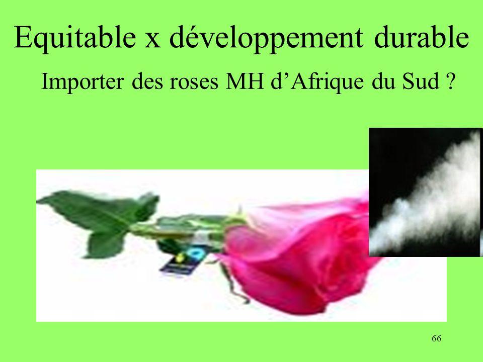 66 Equitable x développement durable Importer des roses MH dAfrique du Sud ?