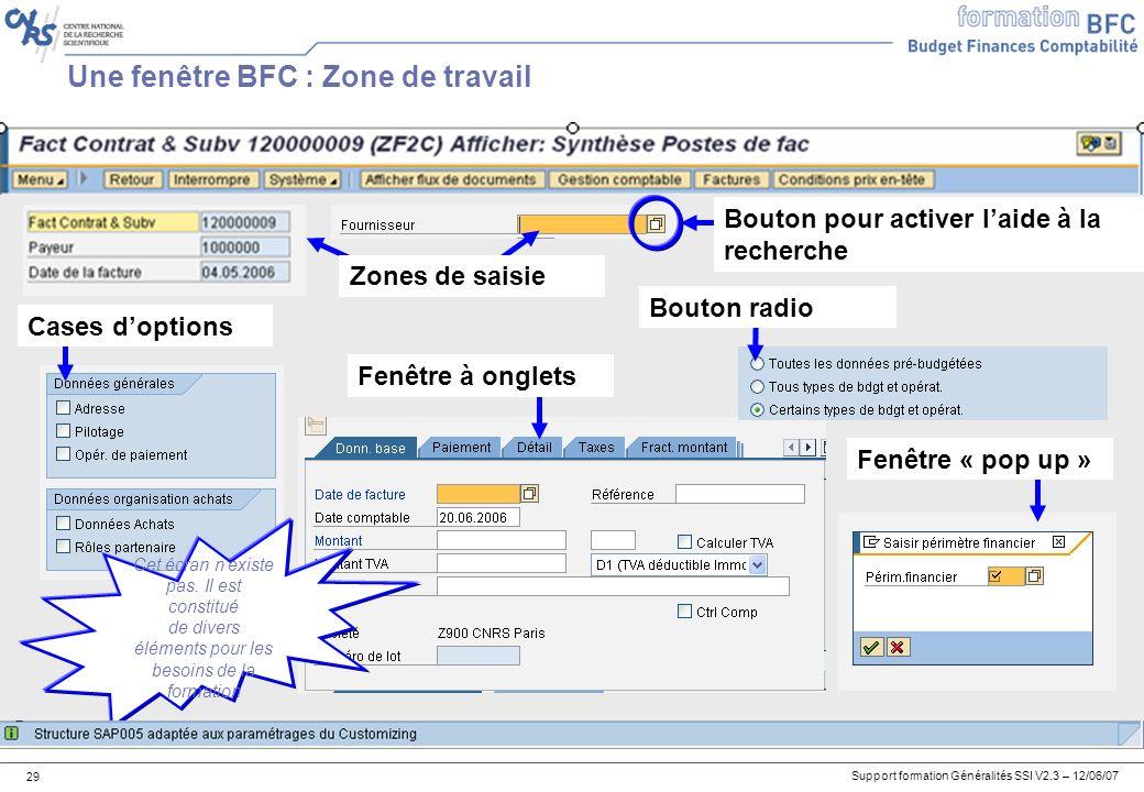 Support formation Généralités SSI V2.3 – 12/06/07 29 Une fenêtre BFC : Zone de travail Fenêtre à onglets Cases doptions Bouton radio Cet écran nexiste pas.