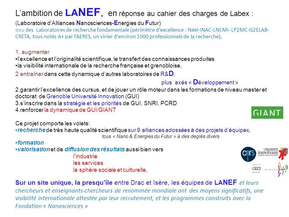 LA NEF : Laboratoire d Alliances Nanoscience-Energies du Futur Périmètre dExcellence du Labex :NEEL/INAC/LNCMI/CRETA/LP2MC/G2ELAB - Autres projets sur le même segment Labex Nanosciences sur Saclay-Orsay, mais maturité acquise à Grenoble et avance de 4 ans à capitaliser.
