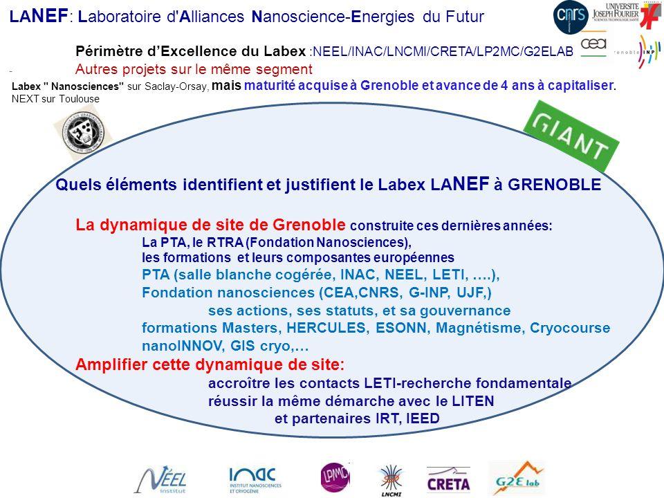 LA NEF : Laboratoire d'Alliances Nanoscience-Energies du Futur Périmètre dExcellence du Labex :NEEL/INAC/LNCMI/CRETA/LP2MC/G2ELAB - Autres projets sur