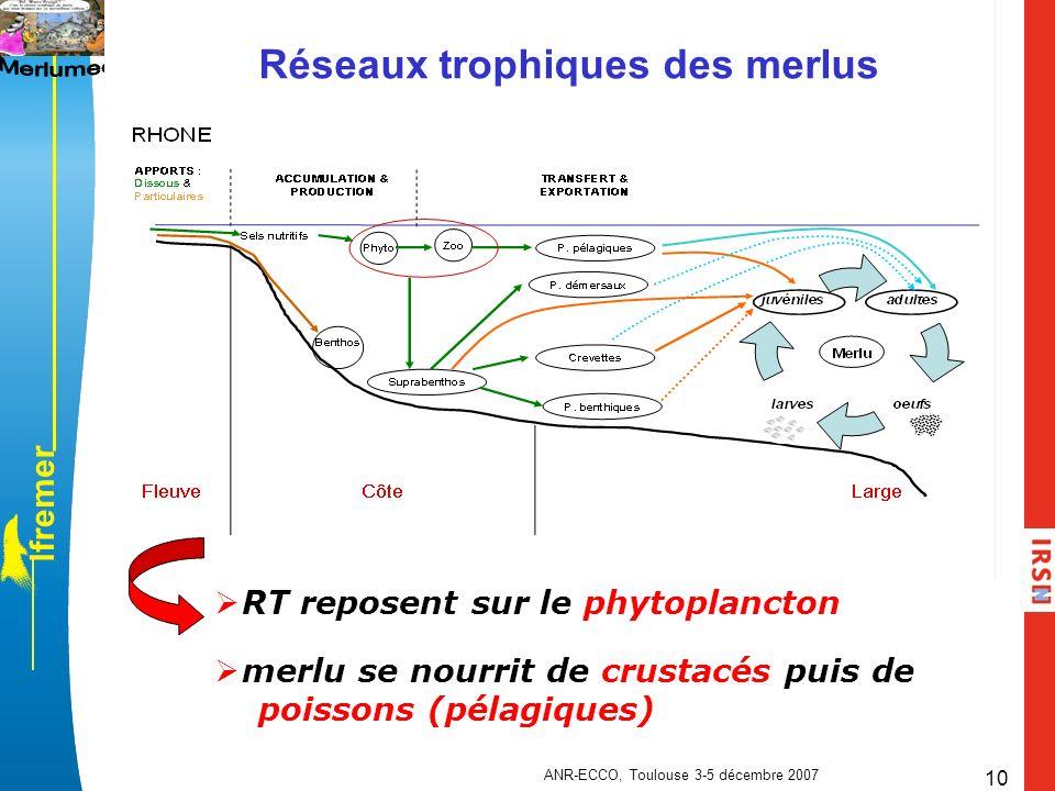 l f r e m e r ANR-ECCO, Toulouse 3-5 décembre 2007 10 Réseaux trophiques des merlus merlu se nourrit de crustacés puis de poissons (pélagiques) RT rep