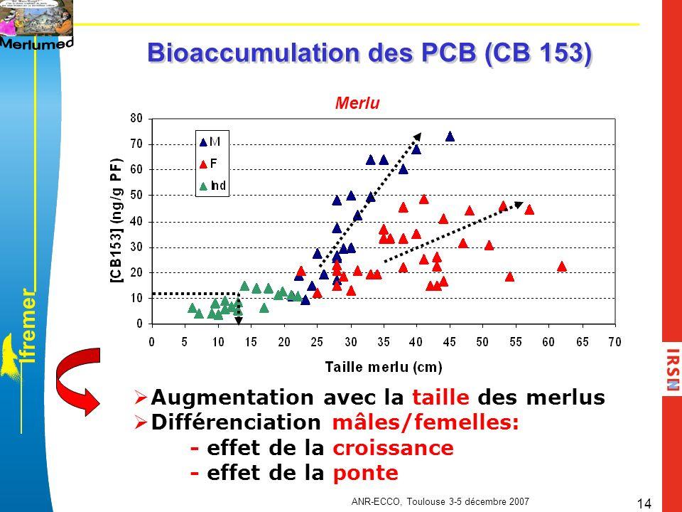 l f r e m e r ANR-ECCO, Toulouse 3-5 décembre 2007 14 Merlu Bioaccumulation des PCB (CB 153) Augmentation avec la taille des merlus Différenciation mâ