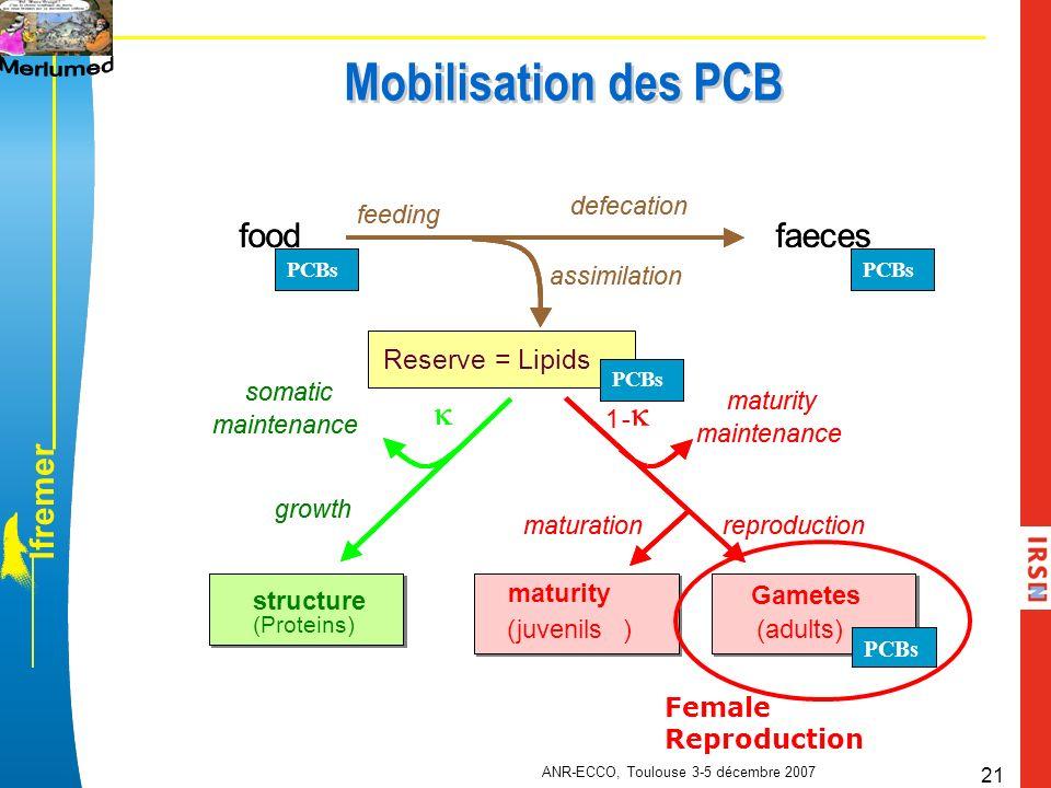 l f r e m e r ANR-ECCO, Toulouse 3-5 décembre 2007 21 Mobilisation des PCB Female Reproduction structure (Proteins)