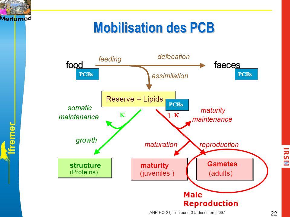 l f r e m e r ANR-ECCO, Toulouse 3-5 décembre 2007 22 Mobilisation des PCB 1- maturity maintenance Repro. Storage (adults) maturation foodfaeces assim