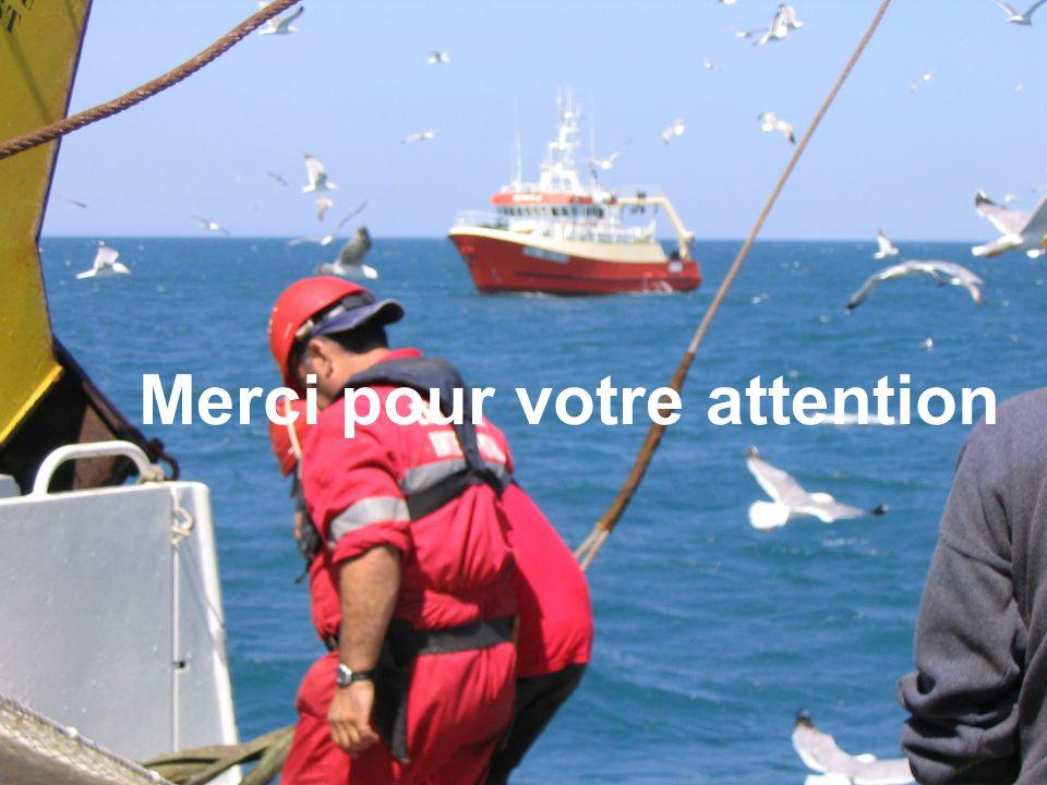 l f r e m e r ANR-ECCO, Toulouse 3-5 décembre 2007 27 MERLUMED Remerciements aux équipes de lEurope et du Téthys Teresa Mathews Capucine Mellon-Duval