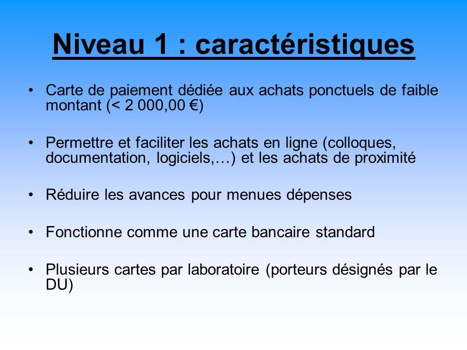 Niveau 1 : caractéristiques Carte de paiement dédiée aux achats ponctuels de faible montant (< 2 000,00 ) Permettre et faciliter les achats en ligne (