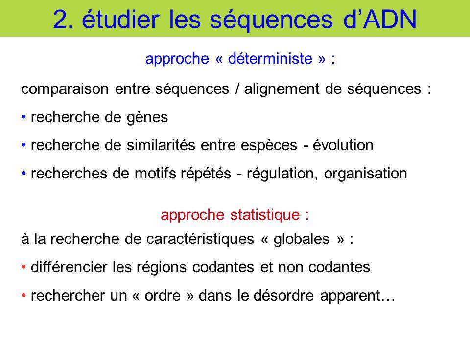 2. étudier les séquences dADN comparaison entre séquences / alignement de séquences : recherche de gènes recherche de similarités entre espèces - évol
