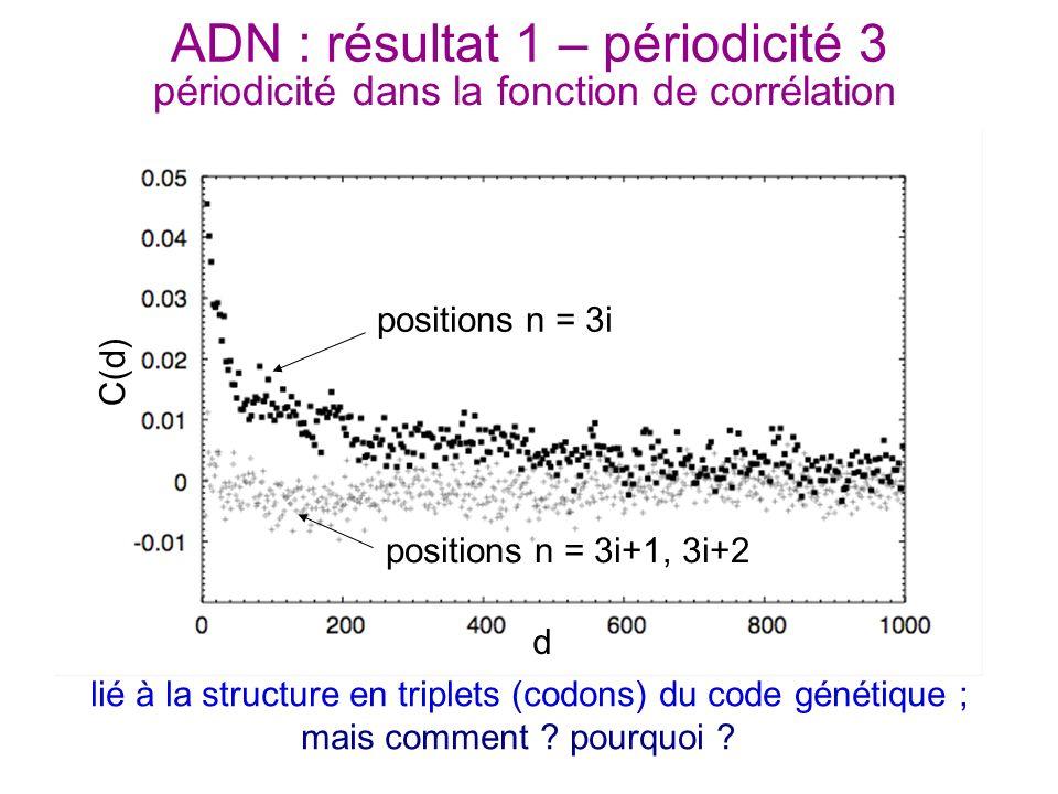 ADN : résultat 1 – périodicité 3 périodicité dans la fonction de corrélation positions n = 3i positions n = 3i+1, 3i+2 d C(d) lié à la structure en tr