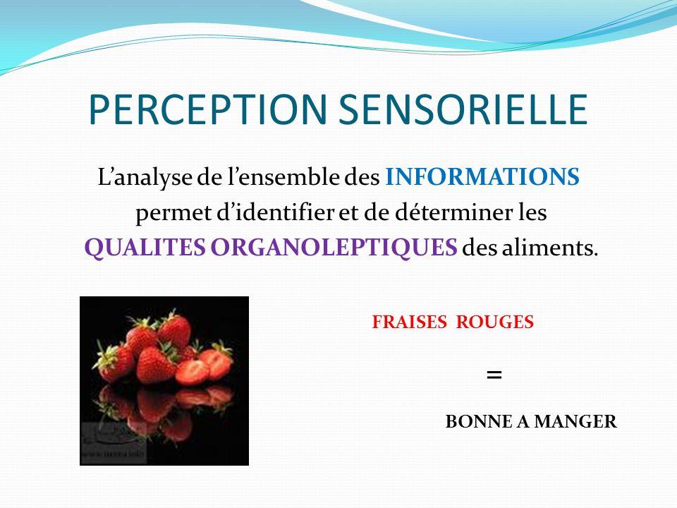 PERCEPTION SENSORIELLE Lanalyse de lensemble des INFORMATIONS permet didentifier et de déterminer les QUALITES ORGANOLEPTIQUES des aliments.