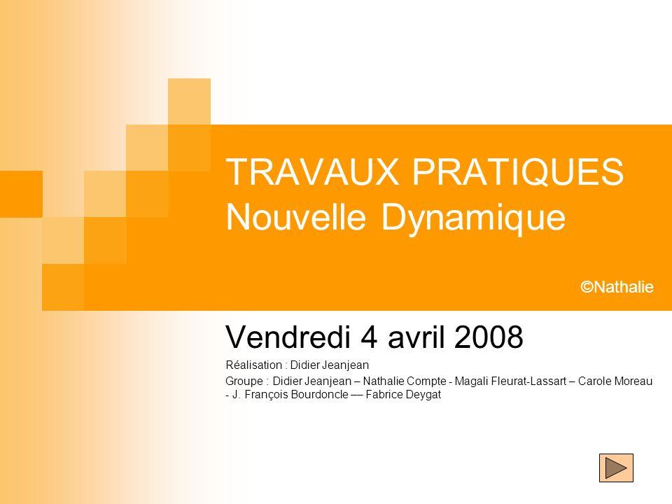 TRAVAUX PRATIQUES Nouvelle Dynamique Vendredi 4 avril 2008 Réalisation : Didier Jeanjean Groupe : Didier Jeanjean – Nathalie Compte - Magali Fleurat-L
