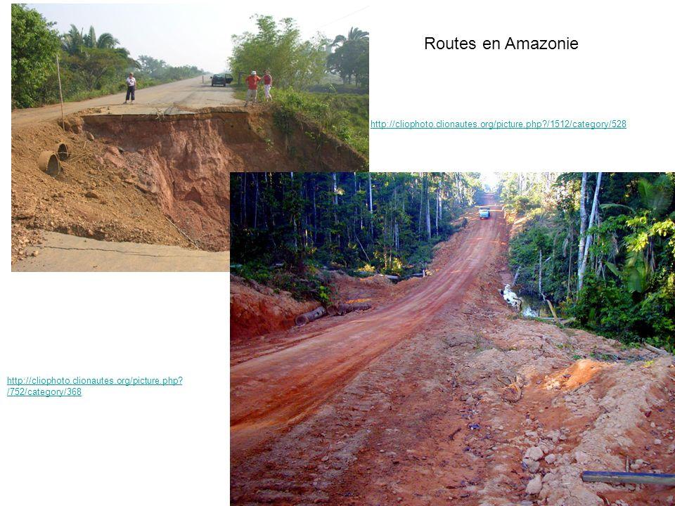 Routes en Amazonie http://cliophoto.clionautes.org/picture.php.