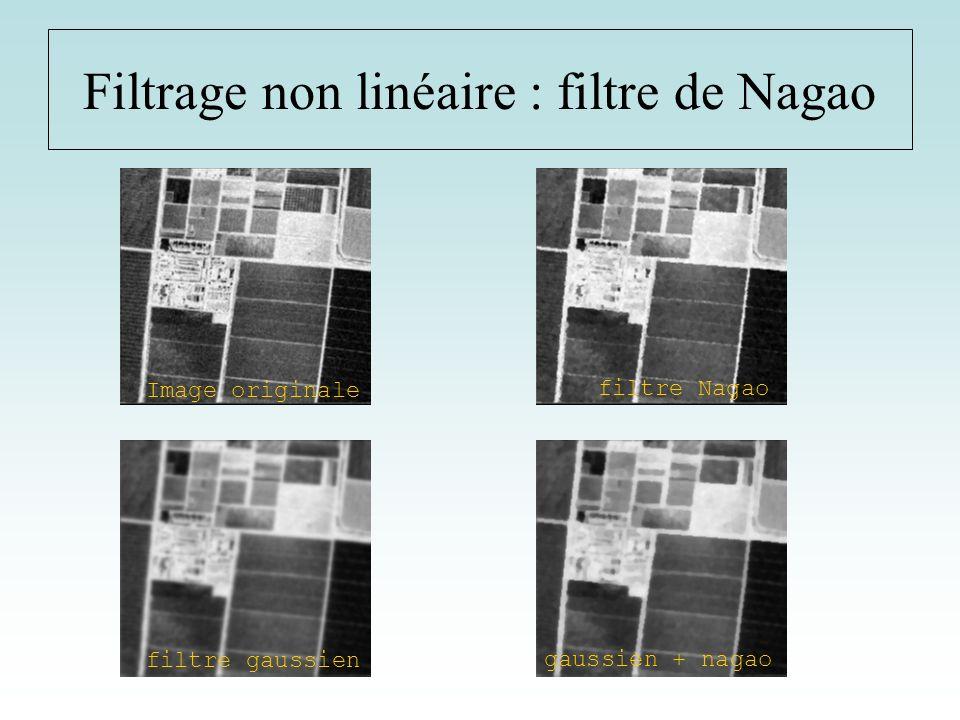 Filtrage non linéaire : filtre de Nagao Image originale filtre gaussien filtre Nagao gaussien + nagao