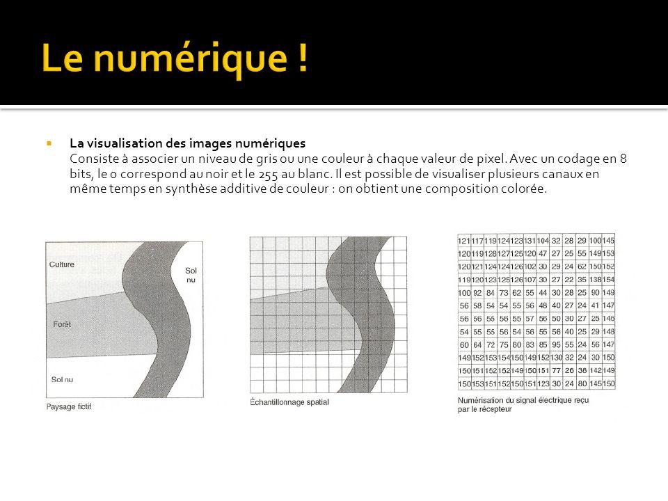 La visualisation des images numériques Consiste à associer un niveau de gris ou une couleur à chaque valeur de pixel. Avec un codage en 8 bits, le 0 c