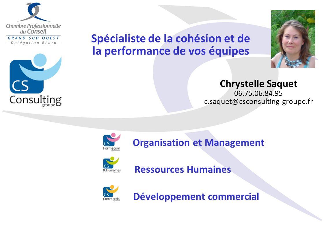 Spécialiste de la cohésion et de la performance de vos équipes Chrystelle Saquet 06.75.06.84.95 c.saquet@csconsulting-groupe.fr Organisation et Manage