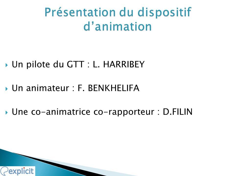 Un pilote du GTT : L. HARRIBEY Un animateur : F. BENKHELIFA Une co-animatrice co-rapporteur : D.FILIN