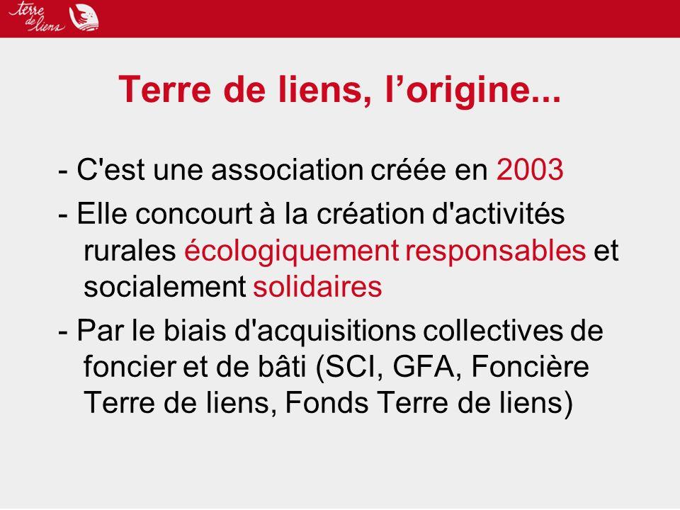 Terre de liens, lorigine... - C'est une association créée en 2003 - Elle concourt à la création d'activités rurales écologiquement responsables et soc