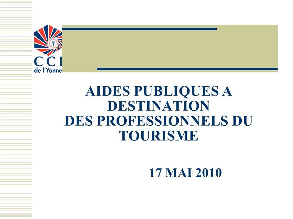 AIDES PUBLIQUES A DESTINATION DES PROFESSIONNELS DU TOURISME 17 MAI 2010