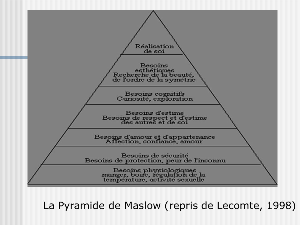 La Pyramide de Maslow (repris de Lecomte, 1998)