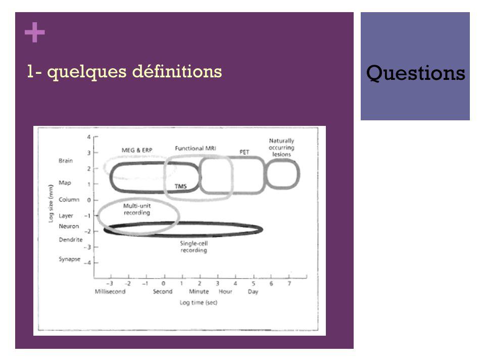 + 1- quelques définitions Questions