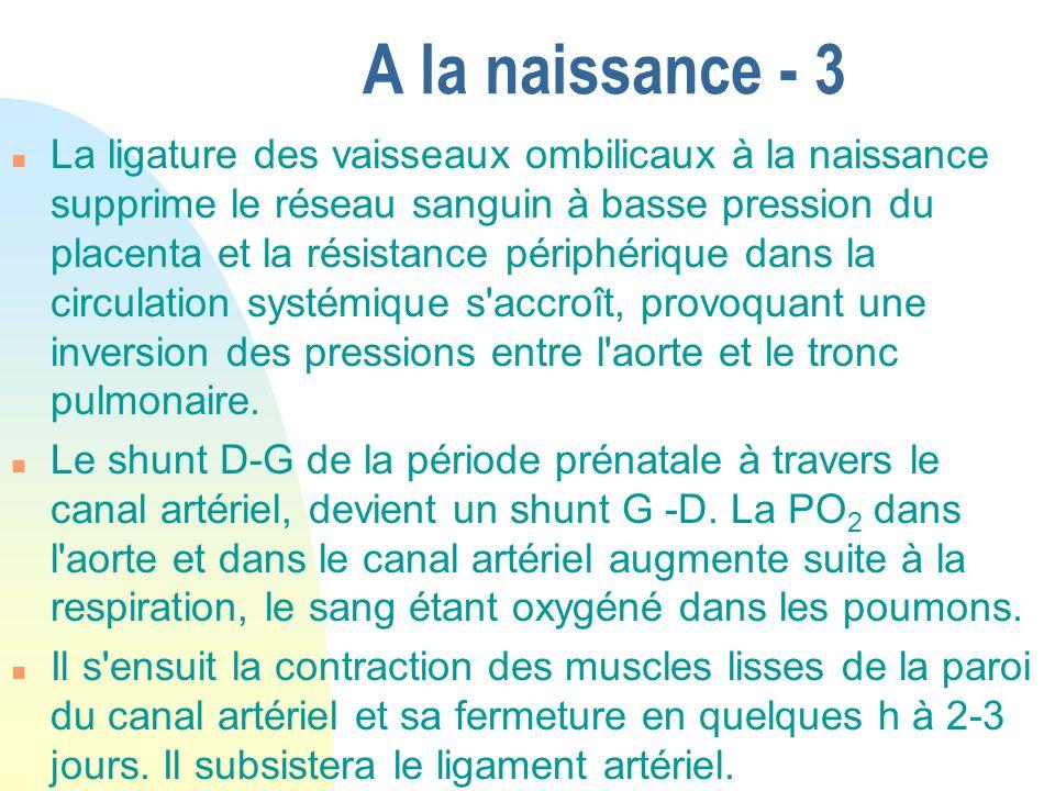 A la naissance - 3 n La ligature des vaisseaux ombilicaux à la naissance supprime le réseau sanguin à basse pression du placenta et la résistance péri