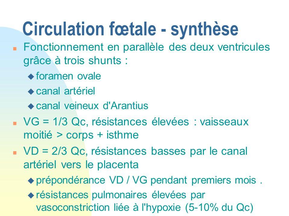 Circulation fœtale - synthèse n Fonctionnement en parallèle des deux ventricules grâce à trois shunts : u foramen ovale u canal artériel u canal veine