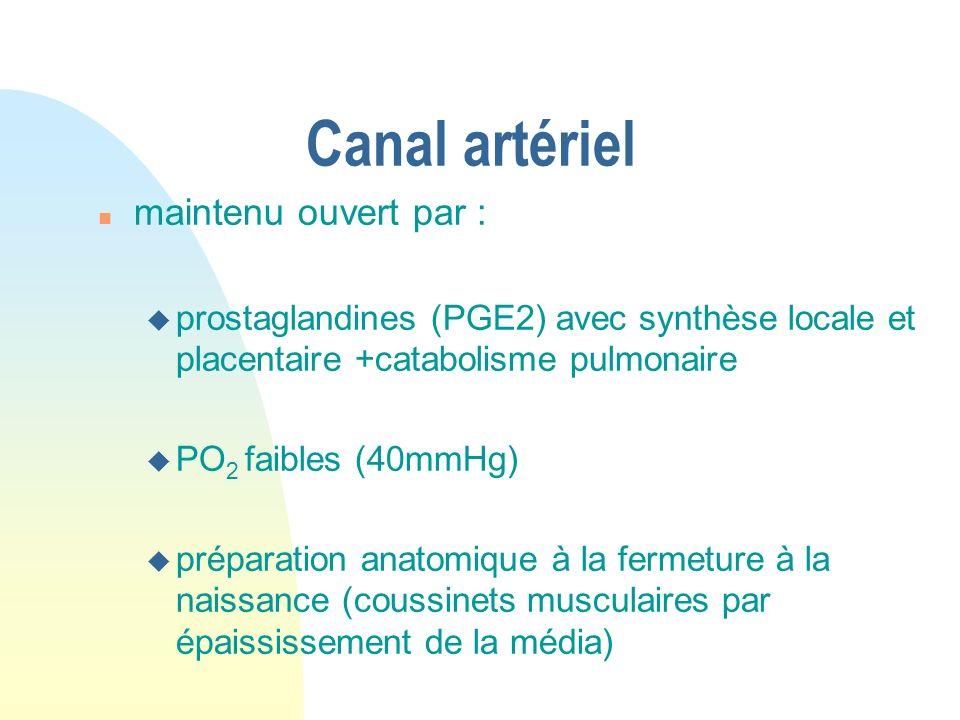 Canal artériel n maintenu ouvert par : u prostaglandines (PGE2) avec synthèse locale et placentaire +catabolisme pulmonaire u PO 2 faibles (40mmHg) u