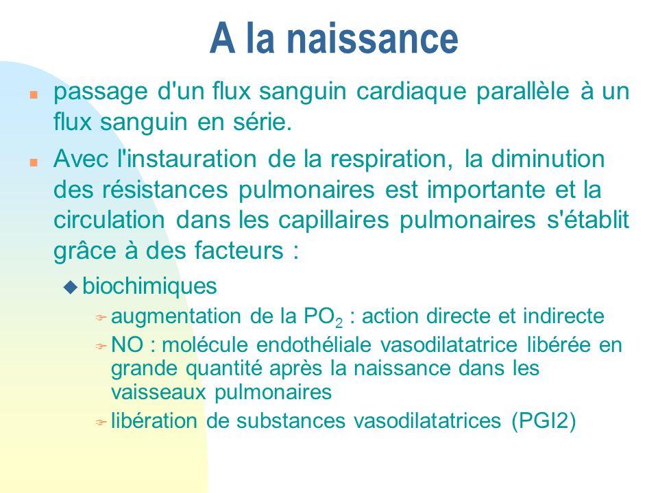 A la naissance n passage d'un flux sanguin cardiaque parallèle à un flux sanguin en série. n Avec l'instauration de la respiration, la diminution des