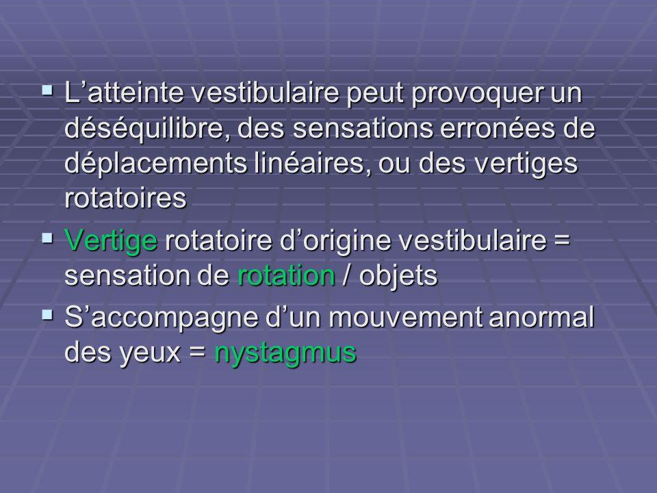 Latteinte vestibulaire peut provoquer un déséquilibre, des sensations erronées de déplacements linéaires, ou des vertiges rotatoires Latteinte vestibu
