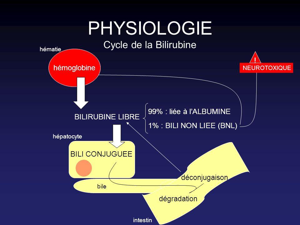 PHYSIOLOGIE Formes de bilirubine : Bili totale : –Bili libre (= indirecte = non conjuguée) Bili liée à lalbumine : 99% Bili non liée : 1% : NEUROTOXIQUE [Bili intra-érythrocytaire] –Bili conjuguée (= directe)