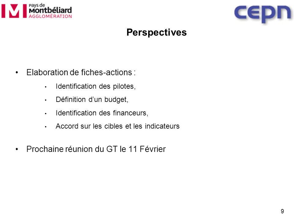 9 Perspectives Elaboration de fiches-actions : Identification des pilotes, Définition dun budget, Identification des financeurs, Accord sur les cibles et les indicateurs Prochaine réunion du GT le 11 Février
