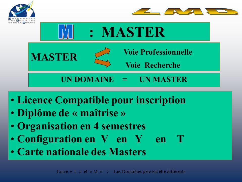 : MASTER MASTER Voie Professionnelle Voie Recherche Licence Compatible pour inscription Diplôme de « maîtrise » Organisation en 4 semestres Configuration en V Y T Carte nationale des Masters UN DOMAINE = UN MASTER Entre « L » et « M » : Les Domaines peuvent être différents