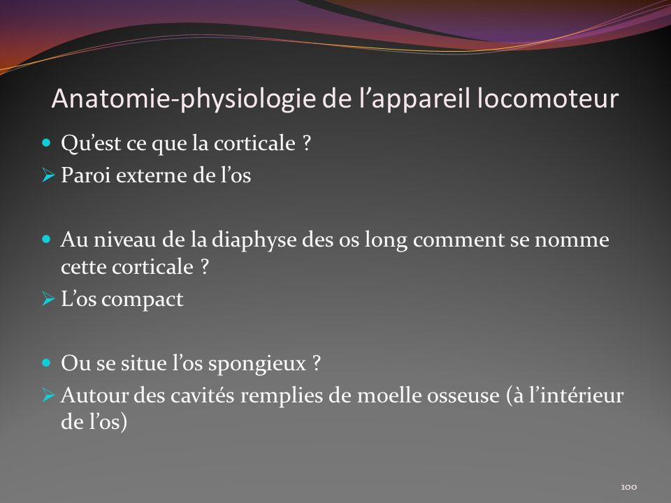 Anatomie-physiologie de lappareil locomoteur Quest ce que la corticale ? Paroi externe de los Au niveau de la diaphyse des os long comment se nomme ce