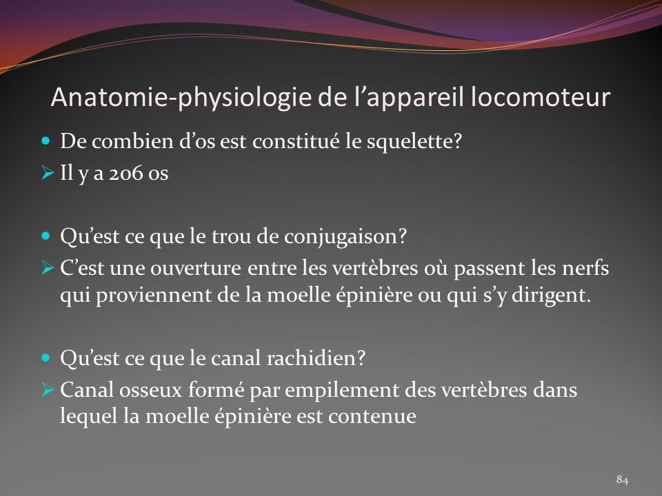 Anatomie-physiologie de lappareil locomoteur De combien dos est constitué le squelette? Il y a 206 os Quest ce que le trou de conjugaison? Cest une ou