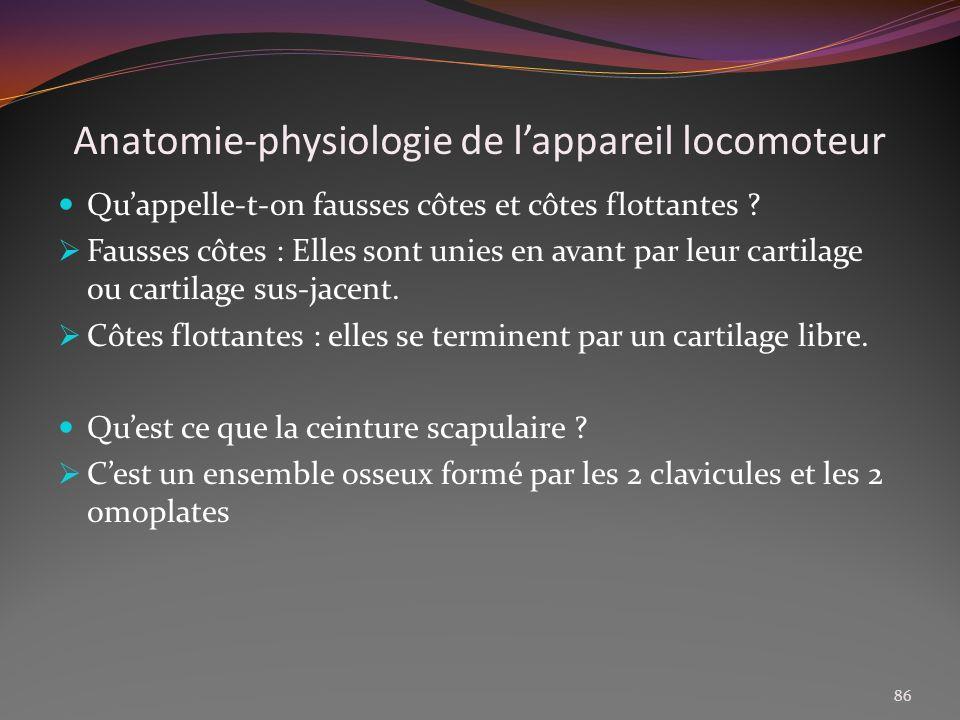 Anatomie-physiologie de lappareil locomoteur Quappelle-t-on fausses côtes et côtes flottantes ? Fausses côtes : Elles sont unies en avant par leur car