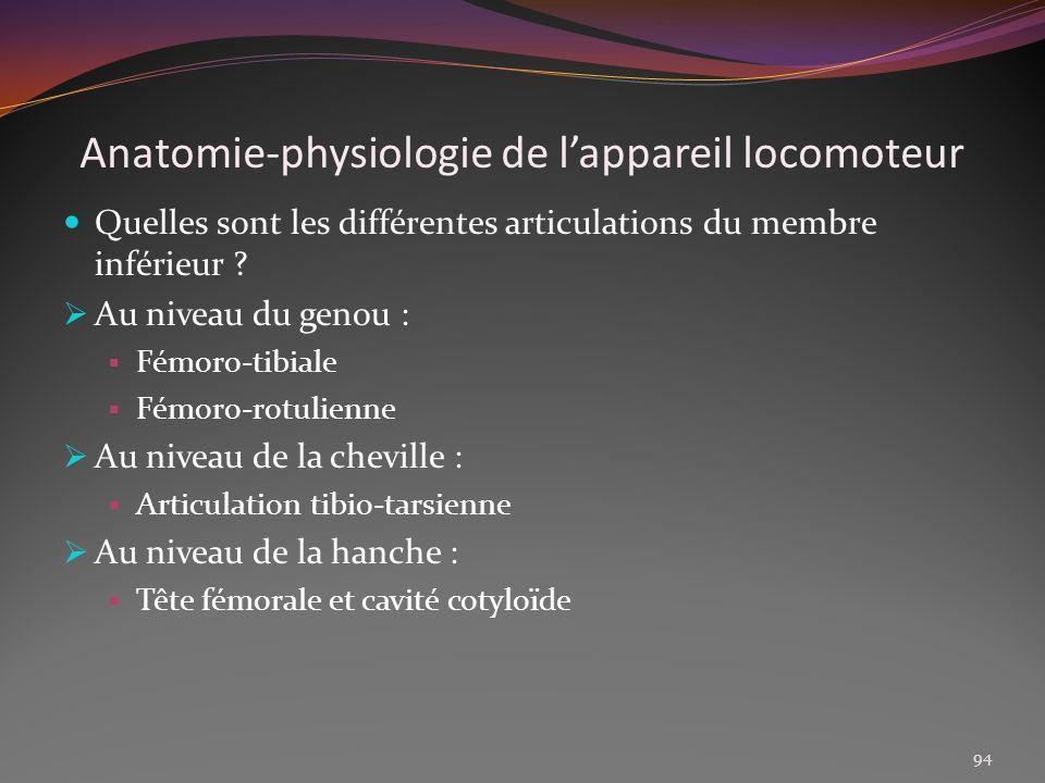 Anatomie-physiologie de lappareil locomoteur Quelles sont les différentes articulations du membre inférieur ? Au niveau du genou : Fémoro-tibiale Fémo