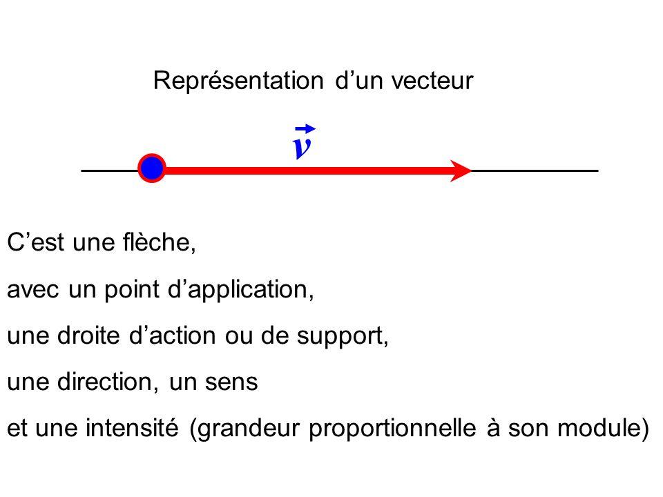 Représentation dun vecteur v Cest une flèche, avec un point dapplication, une droite daction ou de support, une direction, un sens et une intensité (g