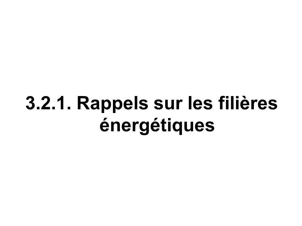 3.2.1. Rappels sur les filières énergétiques