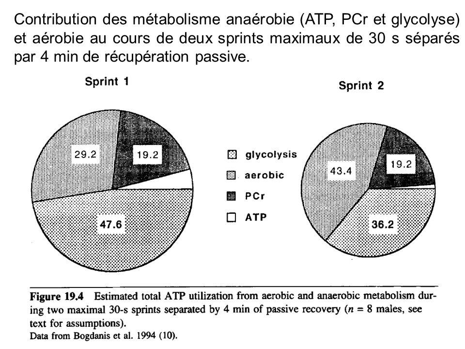 Contribution des métabolisme anaérobie (ATP, PCr et glycolyse) et aérobie au cours de deux sprints maximaux de 30 s séparés par 4 min de récupération