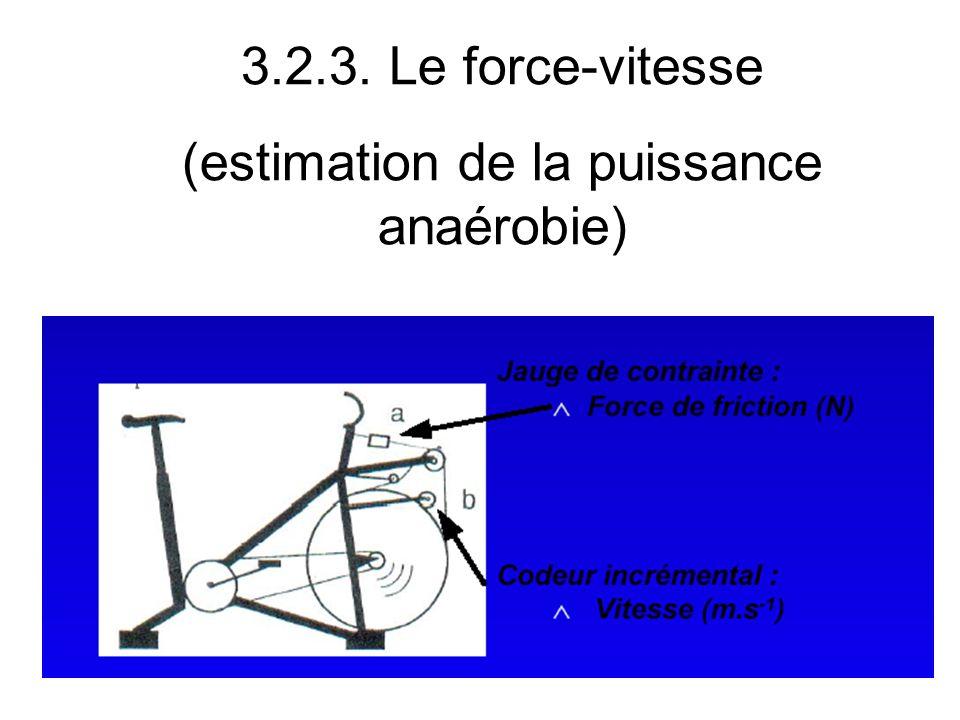 3.2.3. Le force-vitesse (estimation de la puissance anaérobie)
