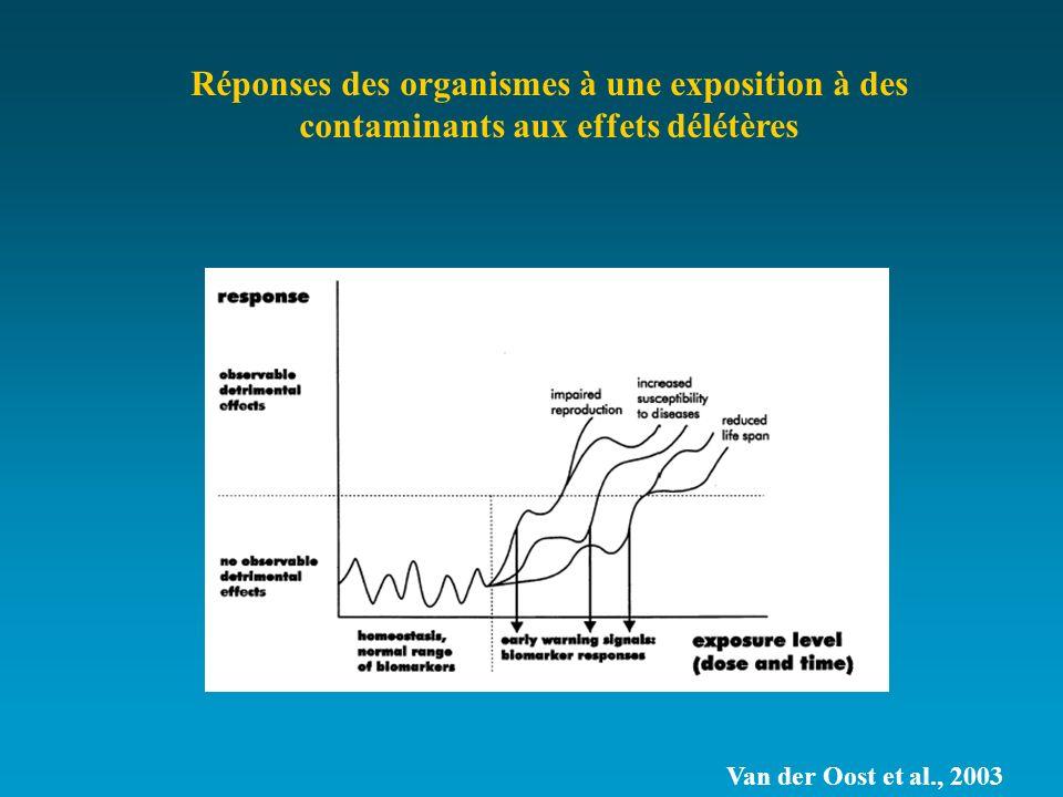 Van der Oost et al., 2003 Réponses des organismes à une exposition à des contaminants aux effets délétères